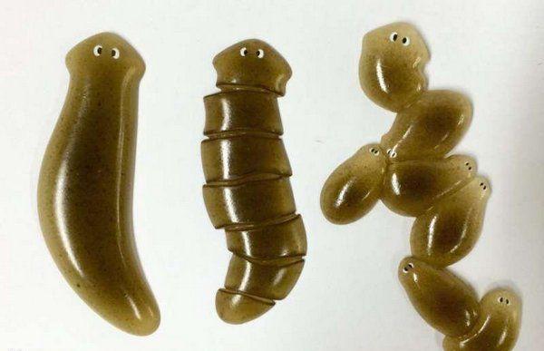 4、涡虫-切不死:一种雌雄同体的生物,生活在池塘和溪流的石头下,涡虫属于扁形动物门,涡虫纲,涡虫属。扁形动物为一群蠕虫状的动物,消化管仅具一个开孔,充口及肛门之用最明显的特点是能够进行断裂生殖,也是最bug的生存技能,怎么切都能够自我生长。