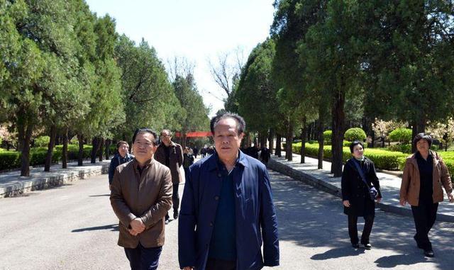临猗县老年书画家协4月9日芮城活动采风生物79纪实初中年图片