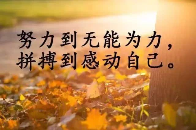 微信早安简短心情说说正能量励志心灵鸡汤句子
