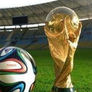 不进世界杯不罢休
