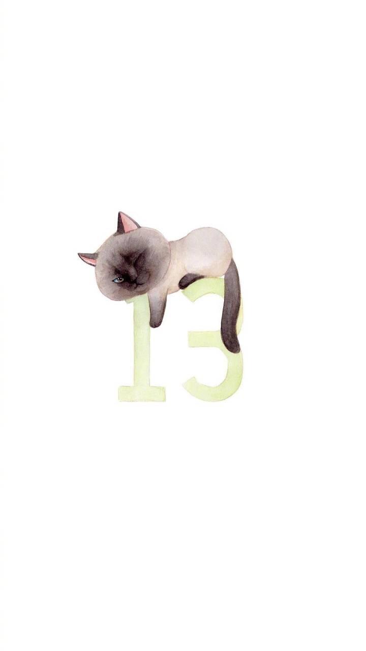 我们一起学猫叫,一起喵,喵,喵喵喵._新浪看点
