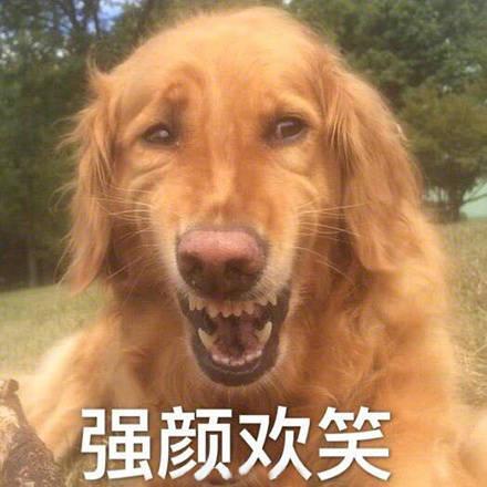 表情包80:强颜欢笑!难为情!惊呆/陷入沉思!打爆你狗头图片