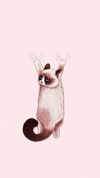 一大波可爱呆萌极简的卡通猫咪壁纸来袭~总有一款是你