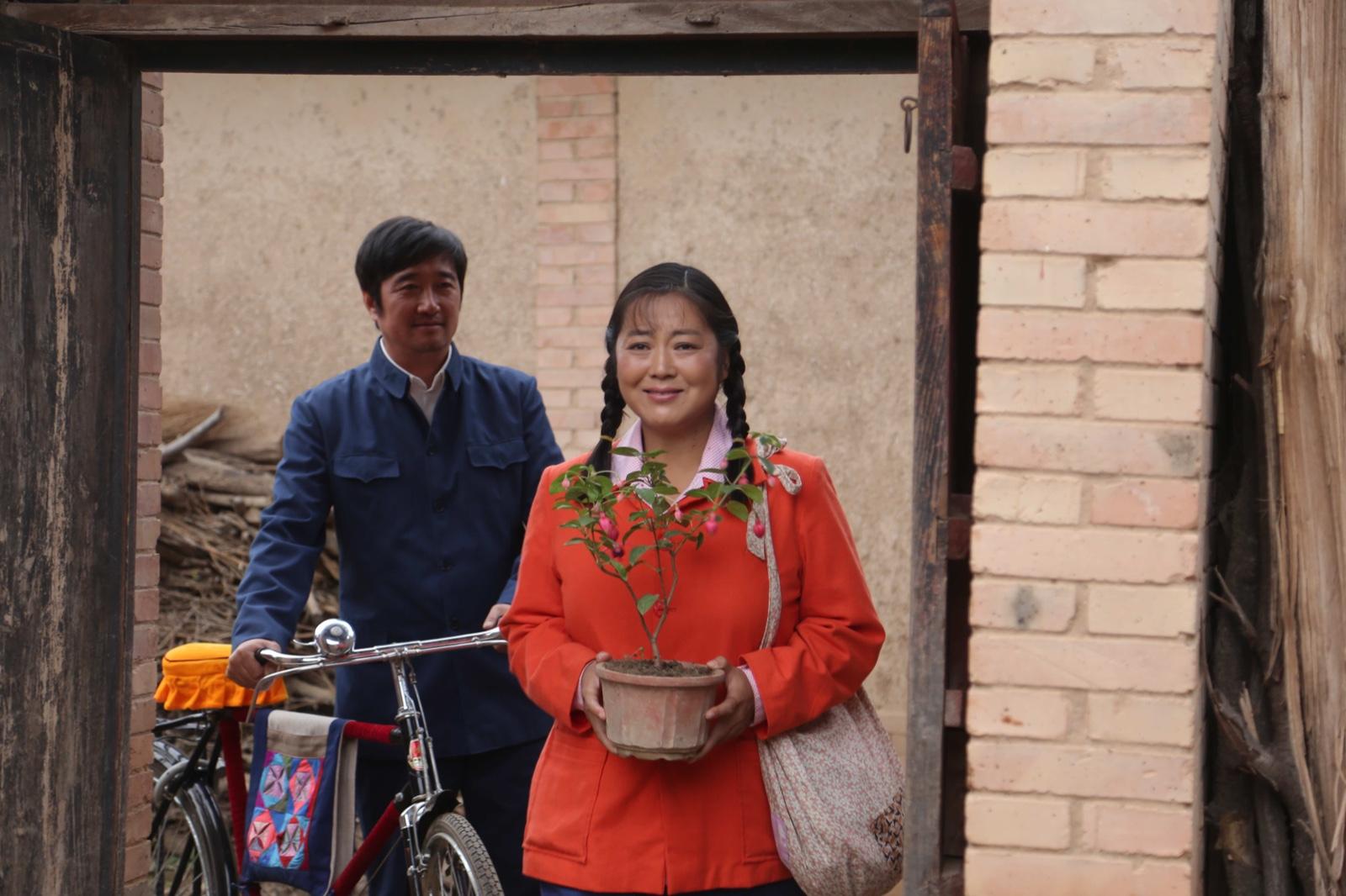 沈航王茜华牵手档v牵手《岁岁年年柿柿红》将登电视剧频道台湾本土剧夫妻12图片