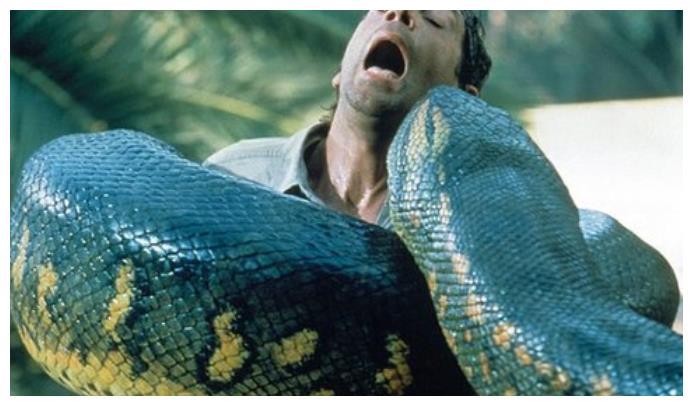 它是已经消失几千年的巨蛇,本以为不能再见,却在2014年再现