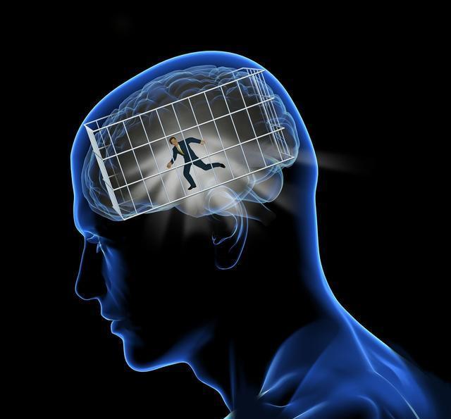 多吃这些核桃可食物大脑,增强记忆力营养夹枣图片