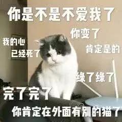 表情:你是不是在外面有猫了搞笑表情包的黑脸图片
