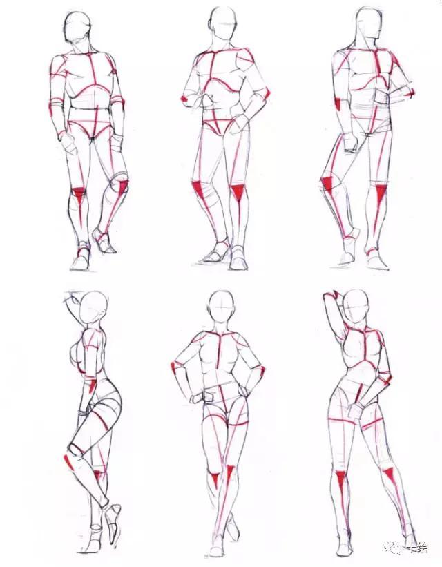 人体器官结构图画画_【教你学画画】画画入门漫画人体课程