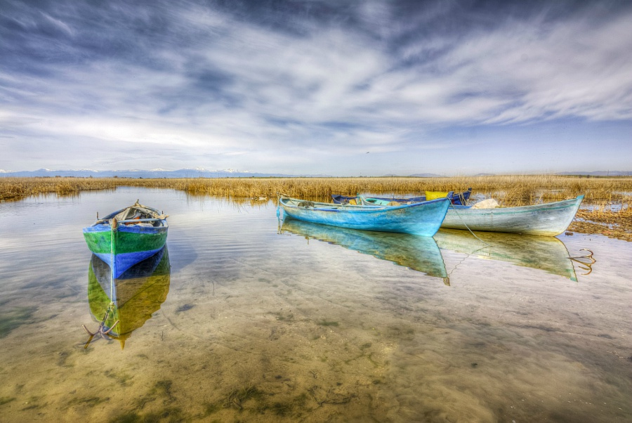 这方平静的湖水,用多彩的画面,告诉我们一个道理:水能载舟
