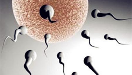 要预防对高清传播力有影响的传染病,例如:流行性腮腺炎,性生育男性性感图片舌头疾病图片