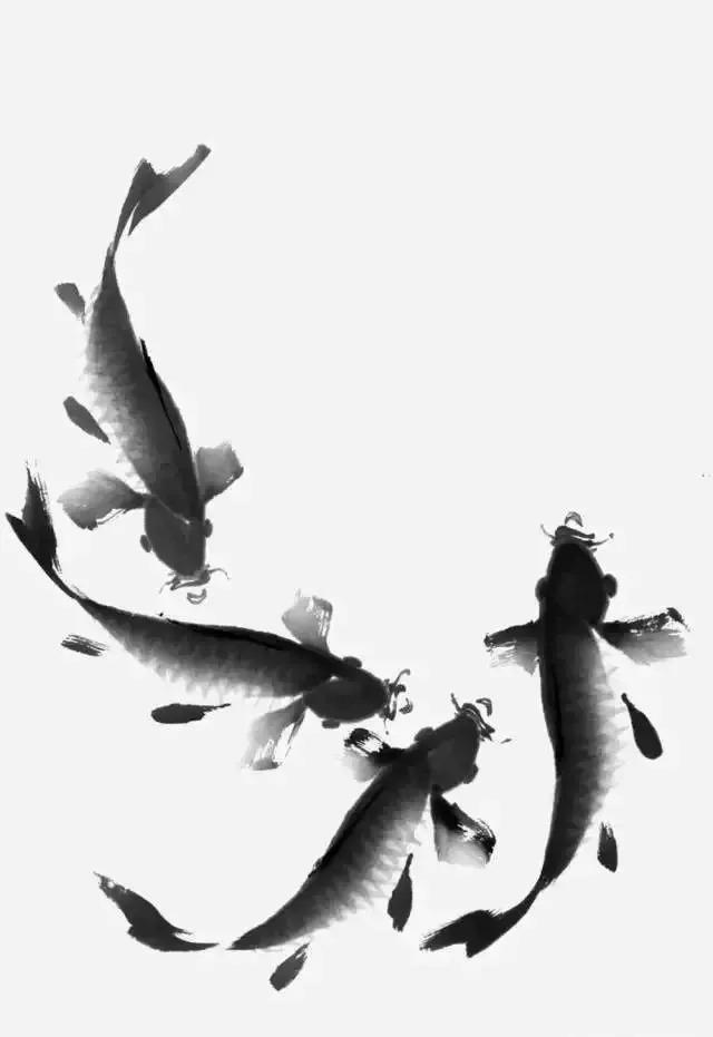 书画大课堂:写意鲤鱼的画法,简单易学图片