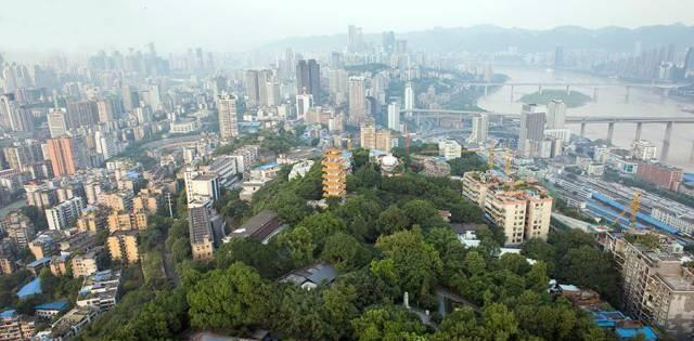 """为何带""""鹅""""呢?因为,重庆的渝中半岛就像是一只天鹅."""