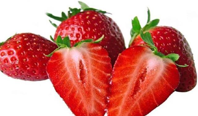草莓果实结构示意图