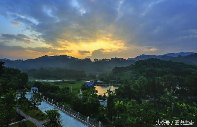 在广东佛山,有一个塞罕坝林场的孪生兄弟叫云勇