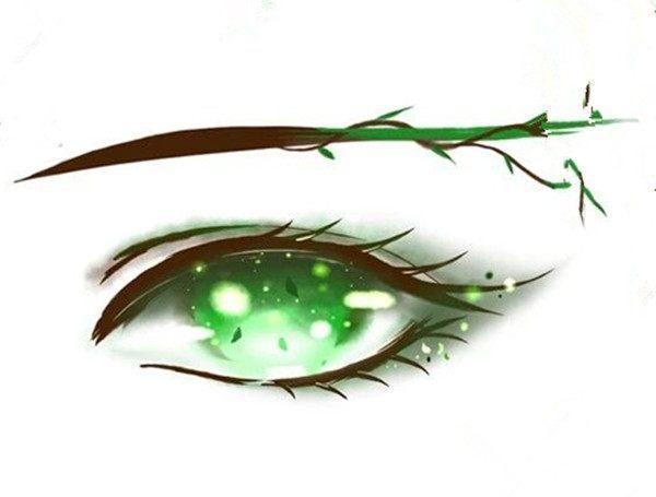 十二星座的手绘眼睛谁最美? 水瓶秋水明眸, 狮子灿若星辰