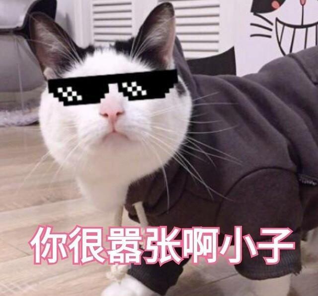 大哥女人|做不做猫咪的姓氏抖表情表情包音图片