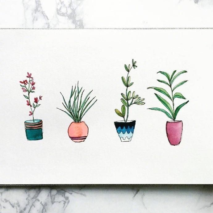 文艺小清新的盆栽画法 作者:bb nashville