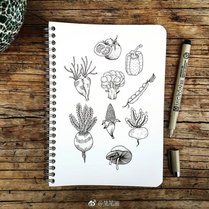 黑白植物手绘手帐素材(ins:yiramee)