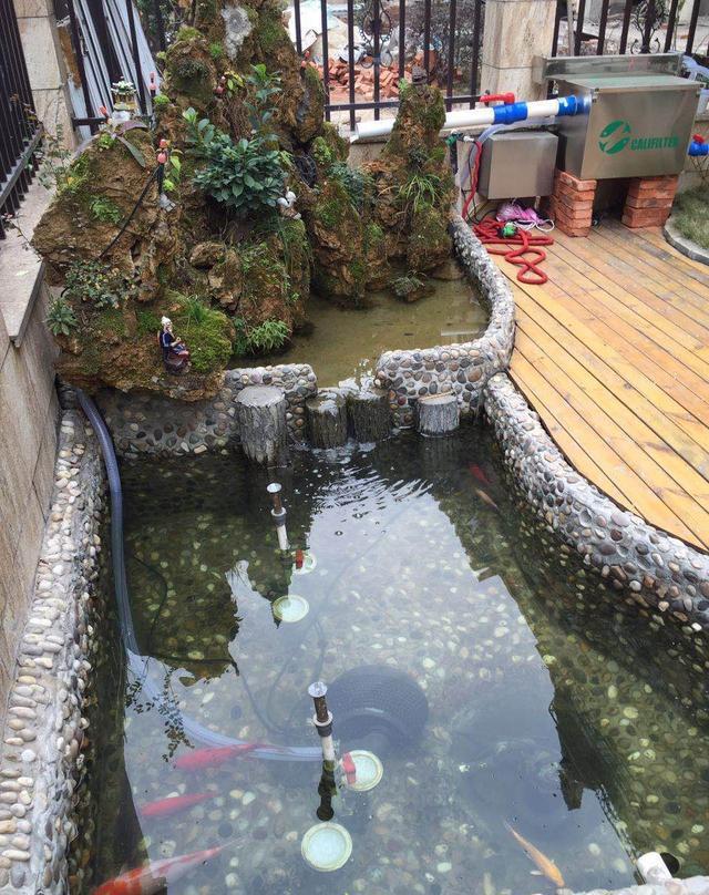 庭院鱼池设计业者几十年经验传授图片