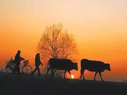 海南这些国家级传统村落,承载着你满满的乡愁