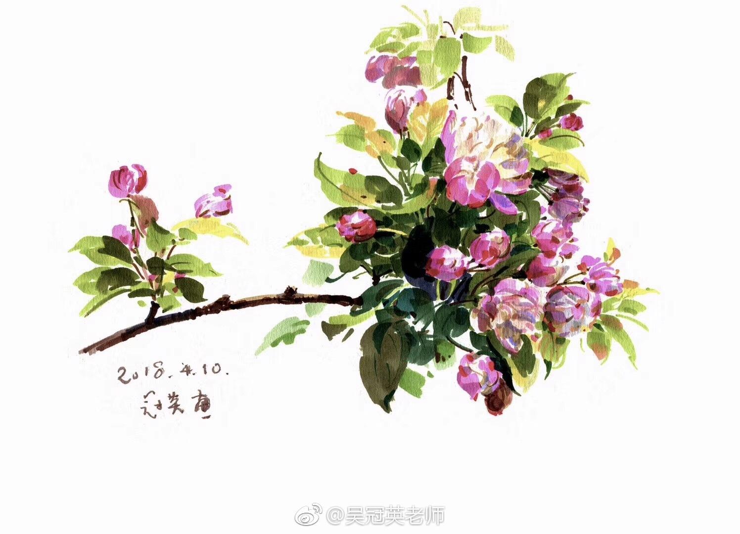 马克笔手绘,回望北京的春天.作者