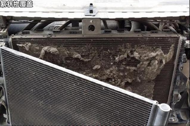 飞絮过后,建议车友考虑清洗水箱冷凝器中间的脏污,避免水温高