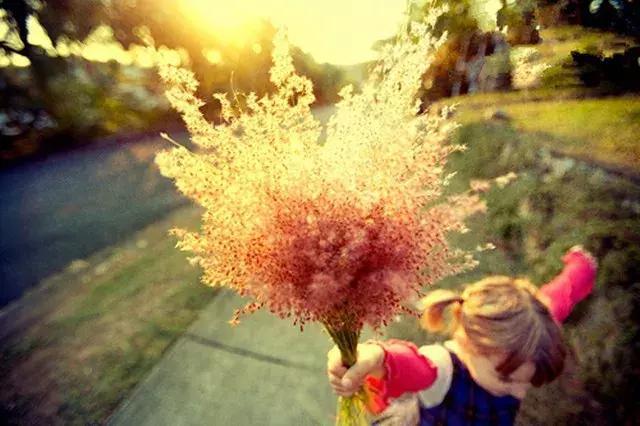 打磨最美情怀枝头配岁月,将图片早安情趣生成人唯美的心语审美的人文与语录v情怀图片