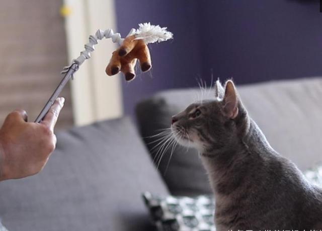 头疼图片可爱动物带字