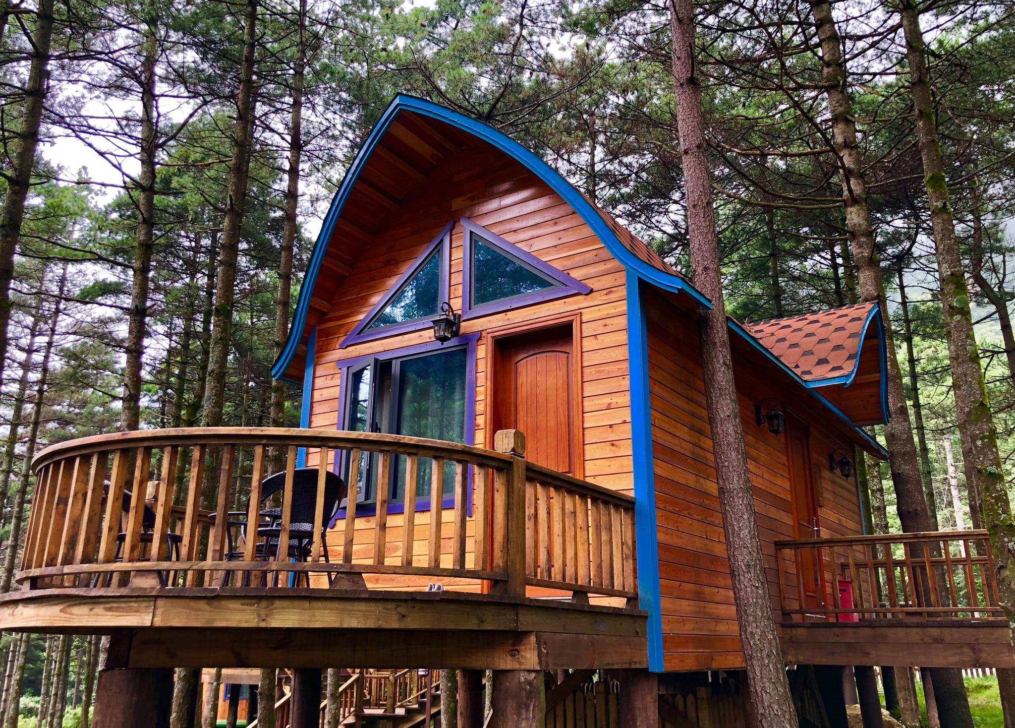 森林木屋别墅,在这住一夜,那该有爽!_新浪看点图片