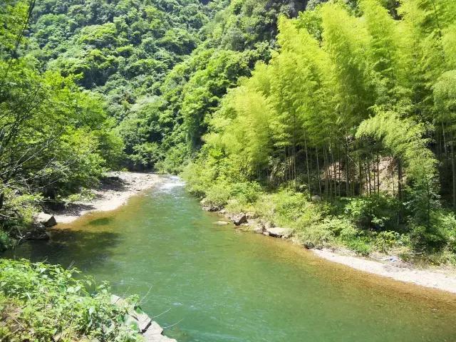 隐居莫干山绝美民宿,唯有山林,星夜,清风,溪水为伴丨西田山雨图片