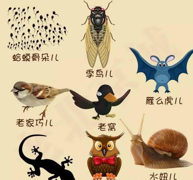 这些北京土语您要都能看懂, 算您能个儿!