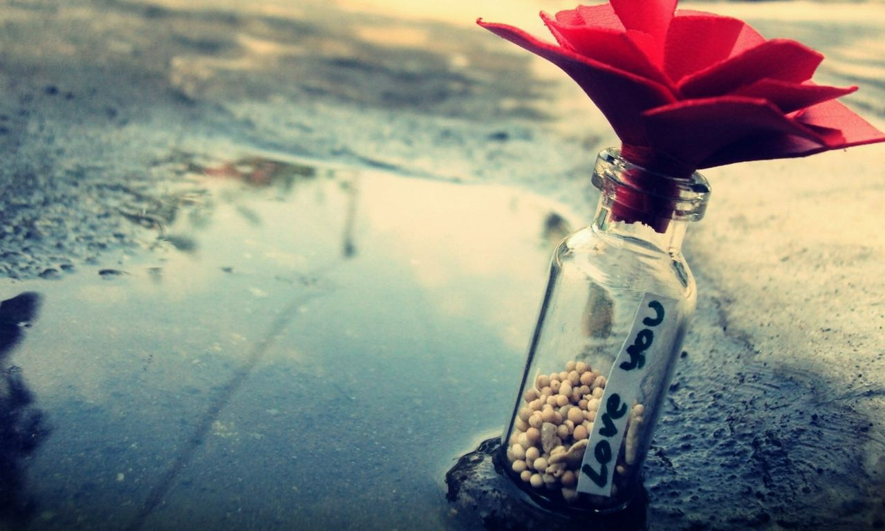 如果我们没有忘记过去从来都不是因为怀念别人,而是怀念过去岁月中的图片