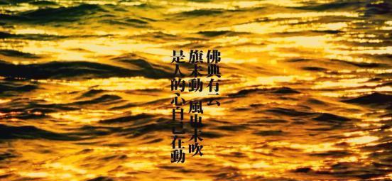 杯中半盏月,闲坐瞎咧咧--聊中国的侠客精神与日