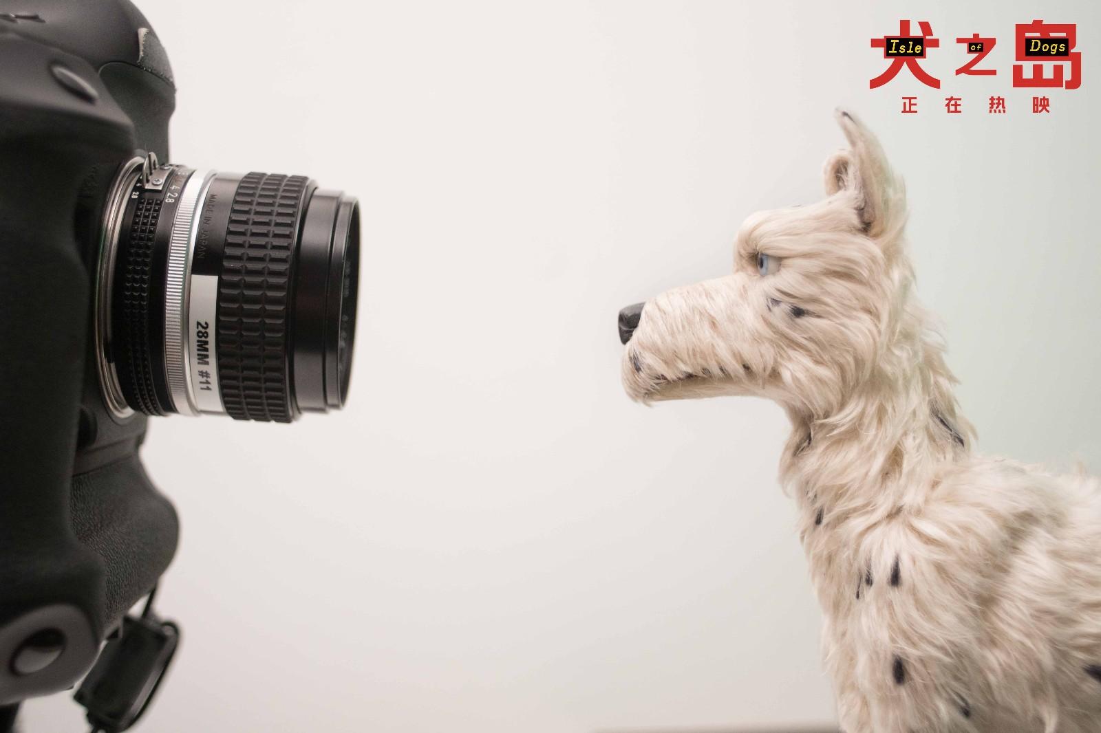 """《犬之岛》人狗相处方式引思考  幕后特辑揭露影片""""功臣"""""""