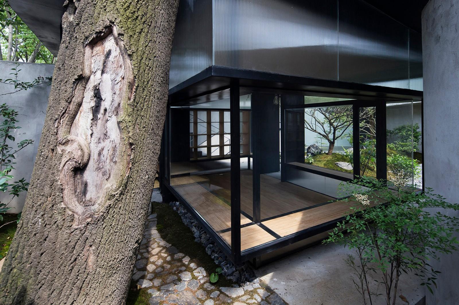 庭院设计:禅茶雅居——110平的小院内,几棵树,一茶室图片