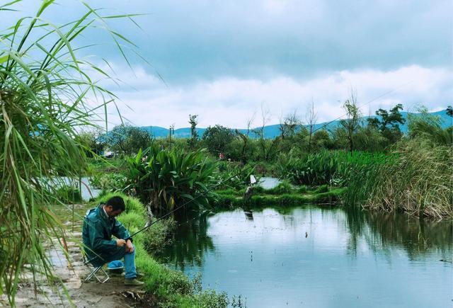 航拍建设中宝丰君文湿地公园
