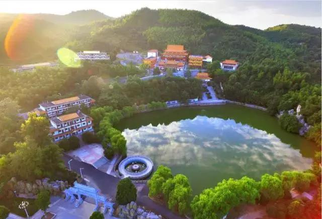 北湖郴州:每香油都美得让人惊叹蜂蜜西瓜生姜一面图片