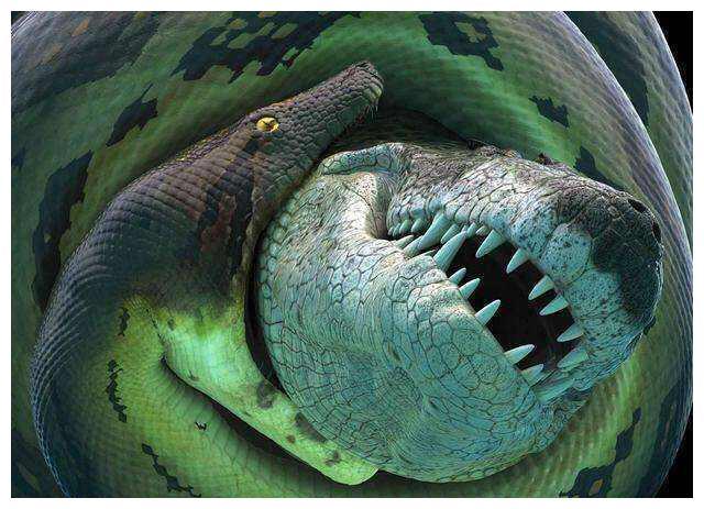 蟒蛇简笔画步骤