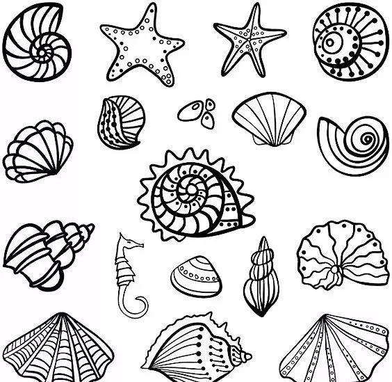 海洋生物简笔画线稿