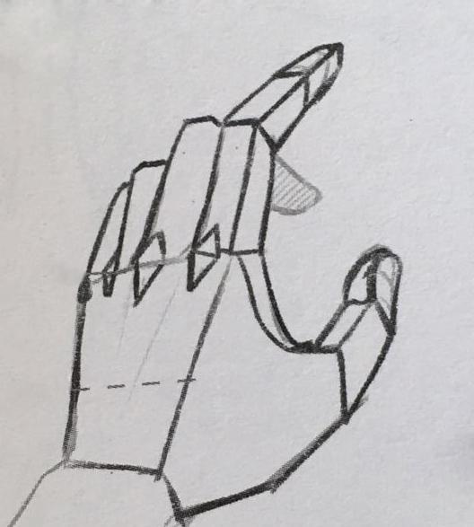 从半侧面观察弯曲的手指,要注意手指的朝向并不是平行的,所以第二图片