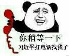 【搞笑表情包】熊猫头:女装大佬了解一下图片