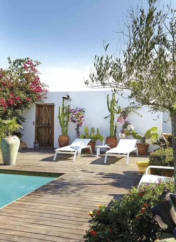 庭院种菜方式也有两种,一种是花圃种菜,另外一种是盆器种植;如果对种图片