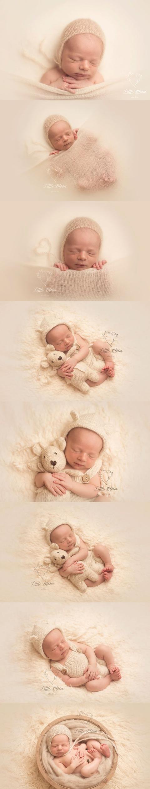 刚出生的婴儿照,实在太萌了图片