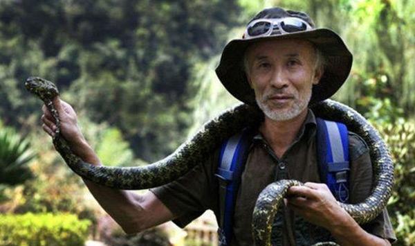 名,最大的莽山烙铁头重达20多公斤   莽山洛铁头蛇虽然毒性比起其他