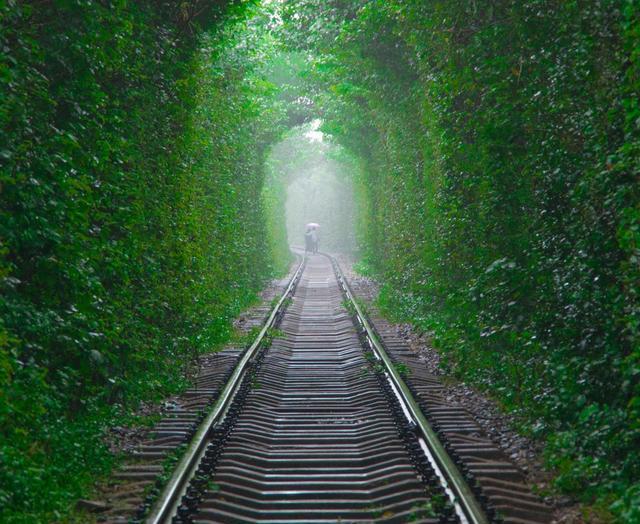 「經典」綠色護眼系列 精美的風景壁紙美圖 第27彈