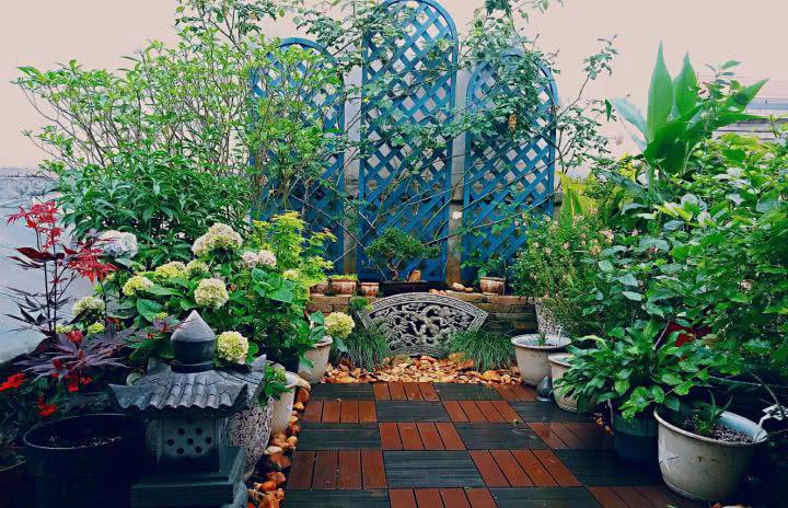 相对阳台花园,入户花园而言,屋顶花园独立,面积较大,具有很强的可塑