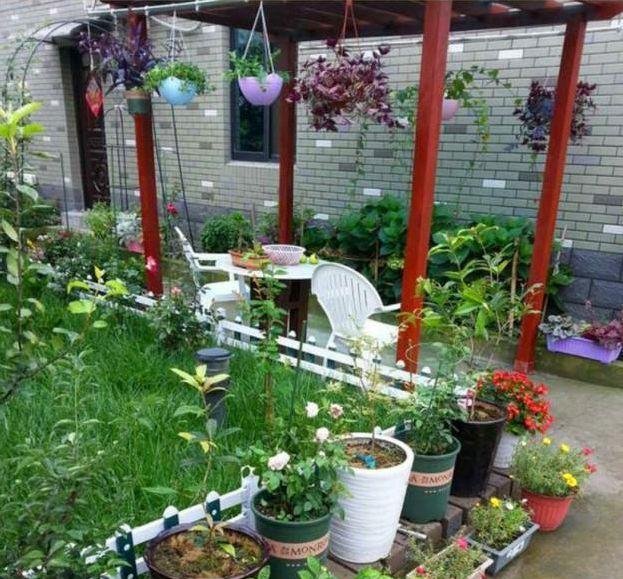 晒晒我的农村新房,出门就是菜地,还有专属私家小花园图片
