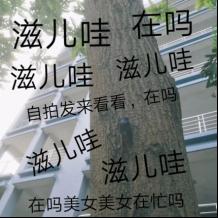 【囧哥:啥样的家庭有矿啊!!!】