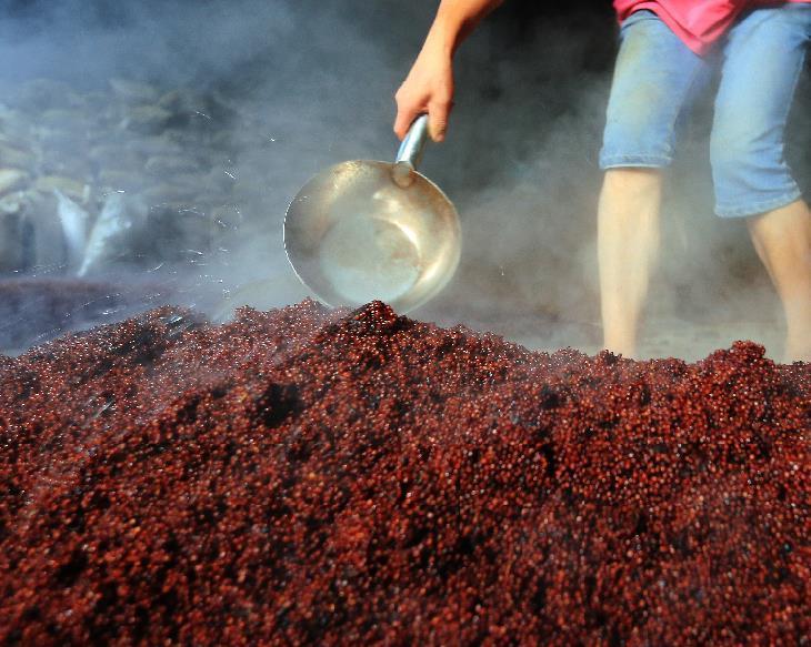 拌醅:固态发酵麸曲白酒,是采用边糖化边发酵的双边发酵工艺,扬渣之后,同时加入曲子和酒母。酒曲的用量视其糖化力的高低而定,一般为酿酒主料的8~10%,酒母用量一般为总投料量的4~6%(即取4~6%的主料作培养酒母用)。为了利于酶促反应的正常进行,在拌醅时应加水(工厂称加浆),控制入池时醅的水分含量为58~62%。 入窖发酵:入窖时醅料品温应在18~20(夏季不超过26),入窖的醅料既不能压的紧,也不能过松,一般掌握在每立方米容积内装醅料630~640公斤左右为宜。装好后,在醅料上盖上一层糠,用窖泥密