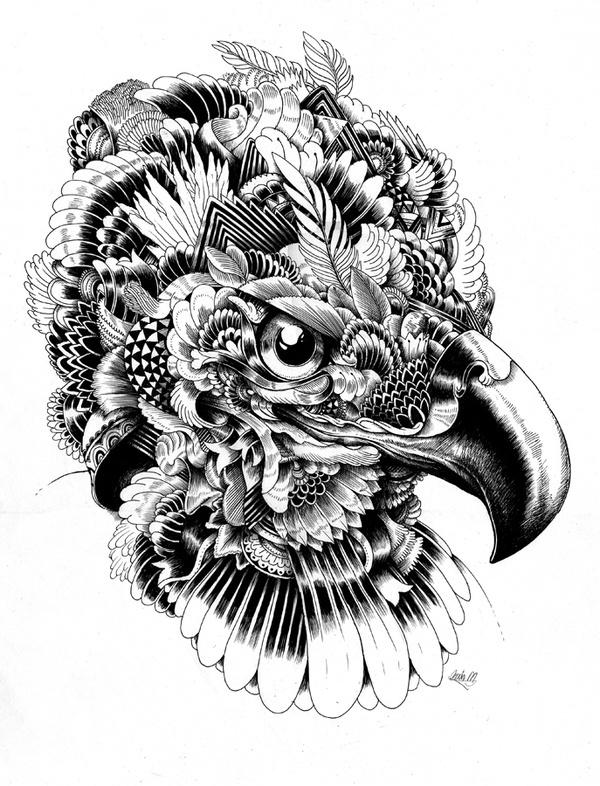 超酷的黑白手绘动物插画. | 英国插画师iain macarthur_新浪看点